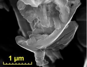 Автоматический поиск тонкодисперсных золотых фаз в слабо минерализованных горных породах с помощью СЭМ TESCAN с системой микроанализа AZtec Automated