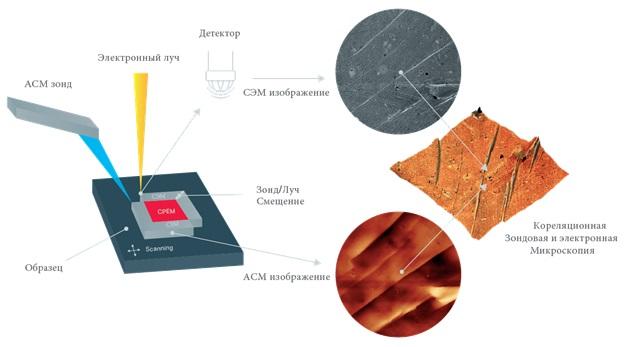 Корреляционная Зондовая и Электронная Микроскопия — КЗЭМ